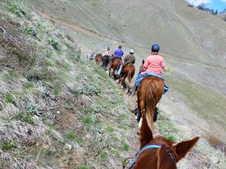 Methow Valley Back Country Horsemen